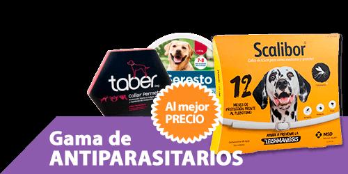 Collares antiparasitarios baratos en Málaga